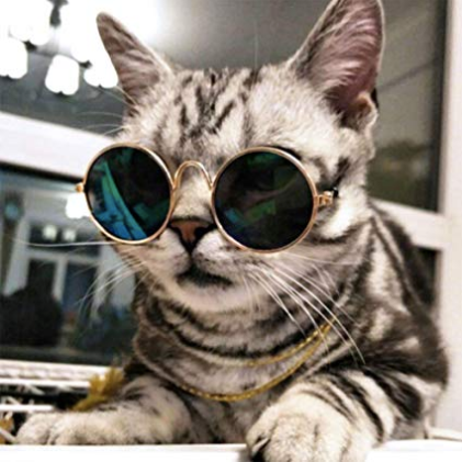 Premium Pet Sunglasses