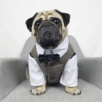 Formal Dog Vest and Suit