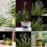 Self Watering Glass