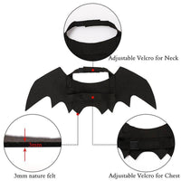 Bat Wing Halloween Costume for Cat