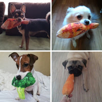 Creative and Funny Dog Toys