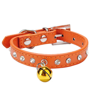 Pet Elastic Buckle Collars - Save and Shop Collections