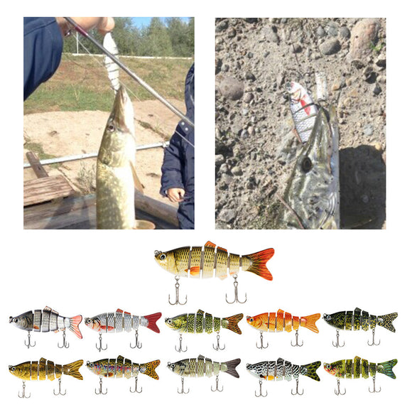 6 Segment Fishing Lure - Save and Shop Collections