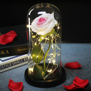 Romance Eternal Life Flower Glass Cover Beauty and Beast Rose LED Battery Lamp Birthday Valentine's Christmas Day Mother Gifts