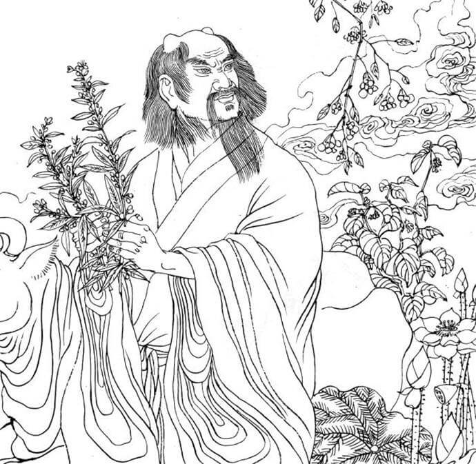 Shennong Tasted Hundreds of Grasses