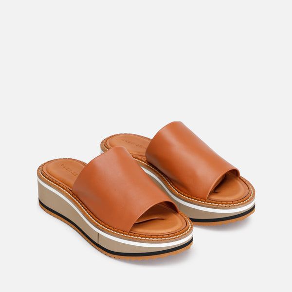 FAST MULES, CAMEL