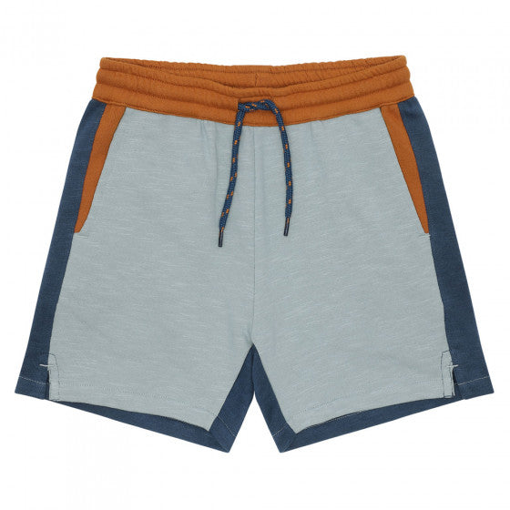 Hudson Colorblock SG Shorts