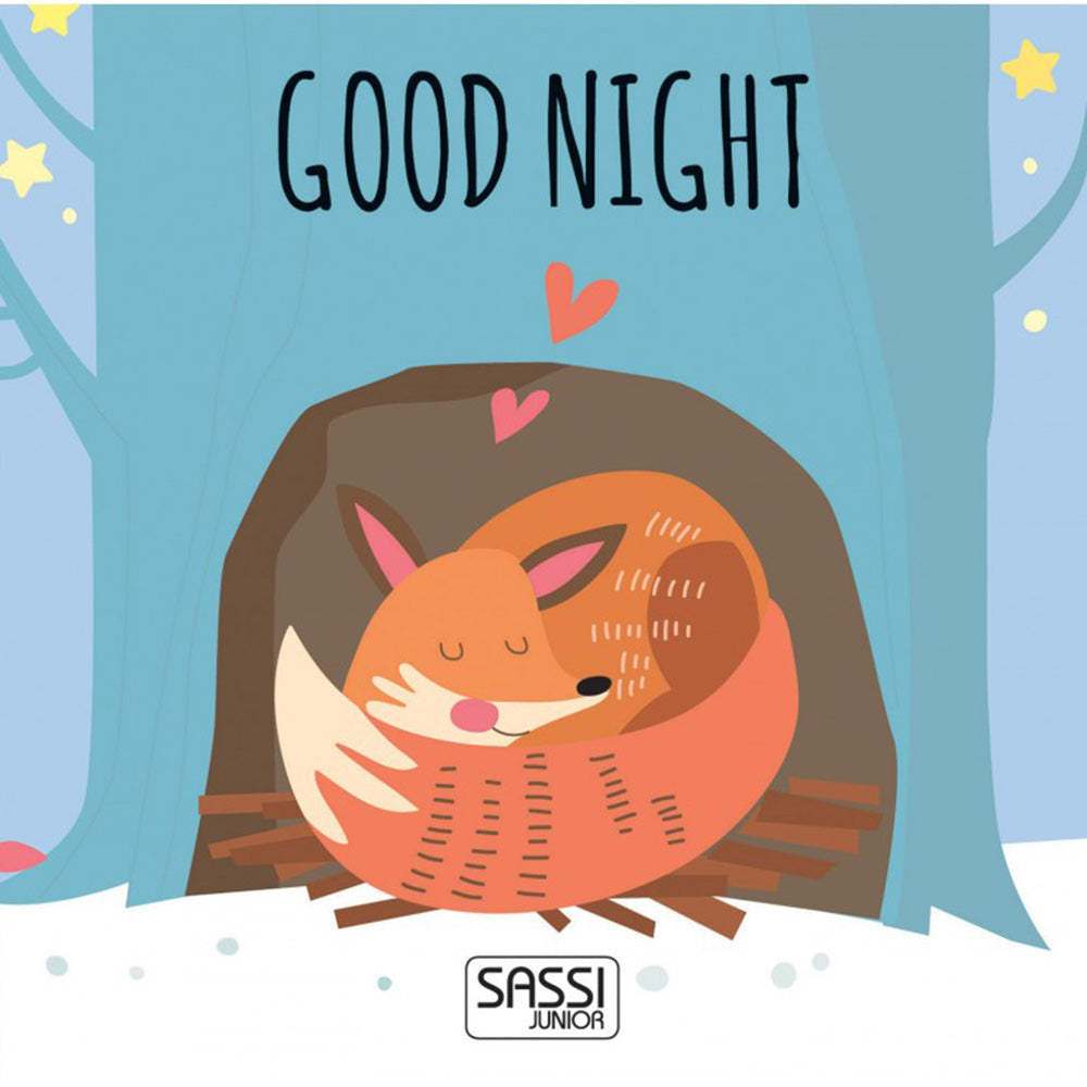Sassi Eco-Blocks And Book Good Night Shapes