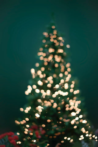 Christmas tree out of focus on a green background