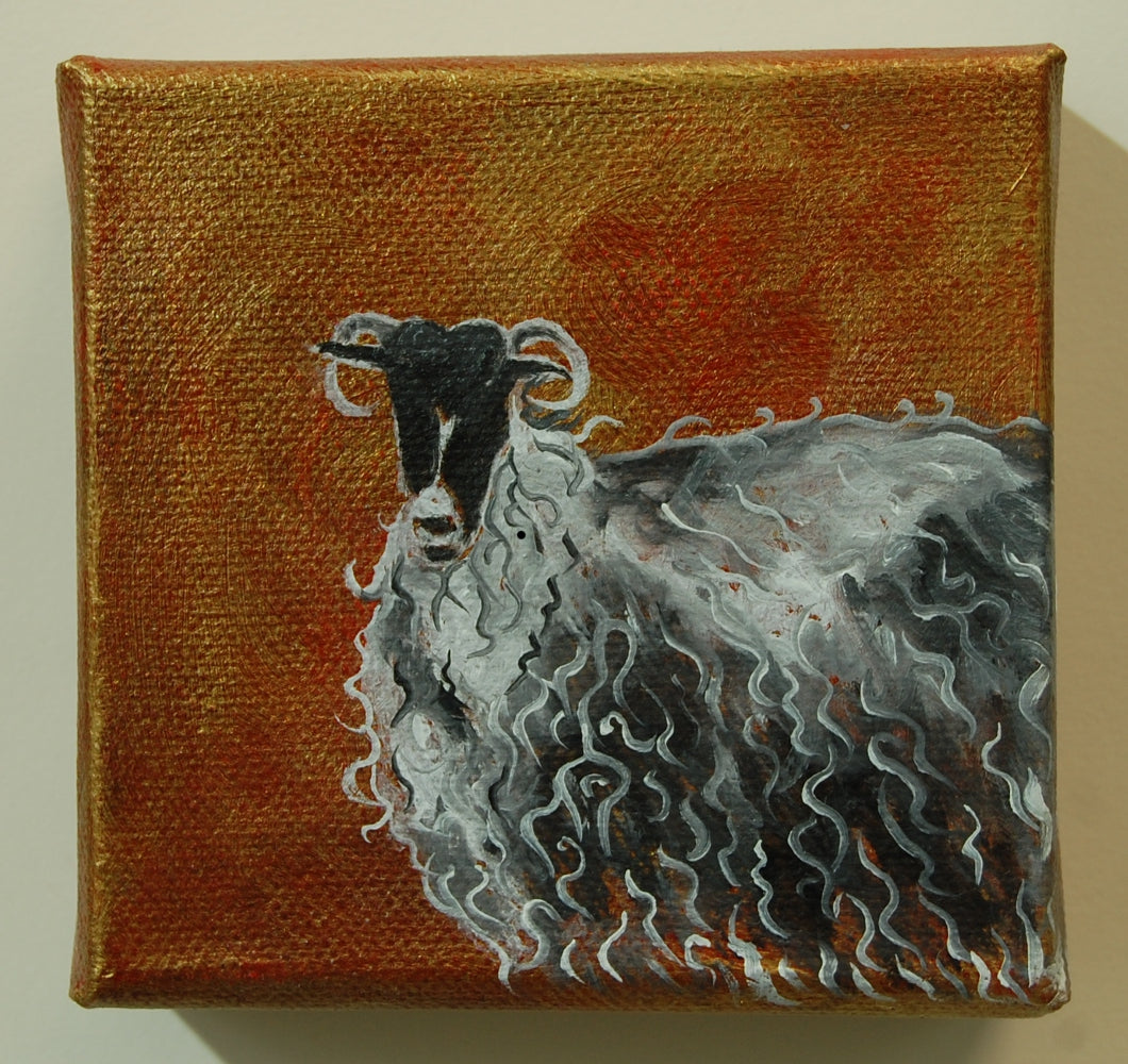 Dark Sheep