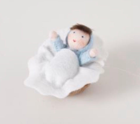 baby in walnut shell - blue - available