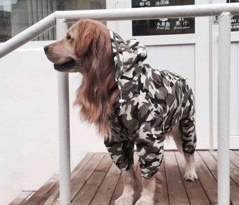 Rain Coat-Small to Large Breed ( upto 80 LBs)