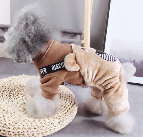 """ Teddy Bear "" Dog Outfit"