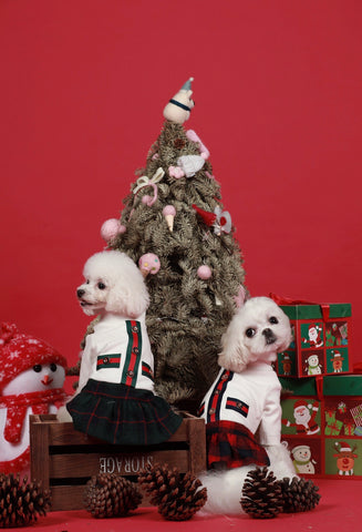 Christmasy Plaid Skirts - Small Breed