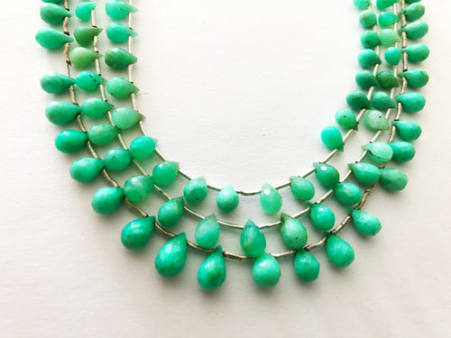 Chrysoprase AA Faceted Round Bottom BRIOLETTES (MULTIPLE SIZES)