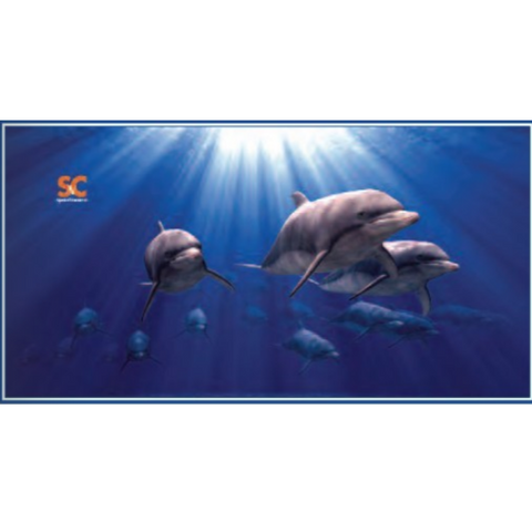 LARGE MICRO FIBER DOLPHINS TOWEL