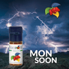 MONSOON 10ML
