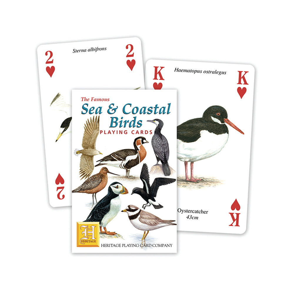 Sea and coastal birds playing cards, front of pack