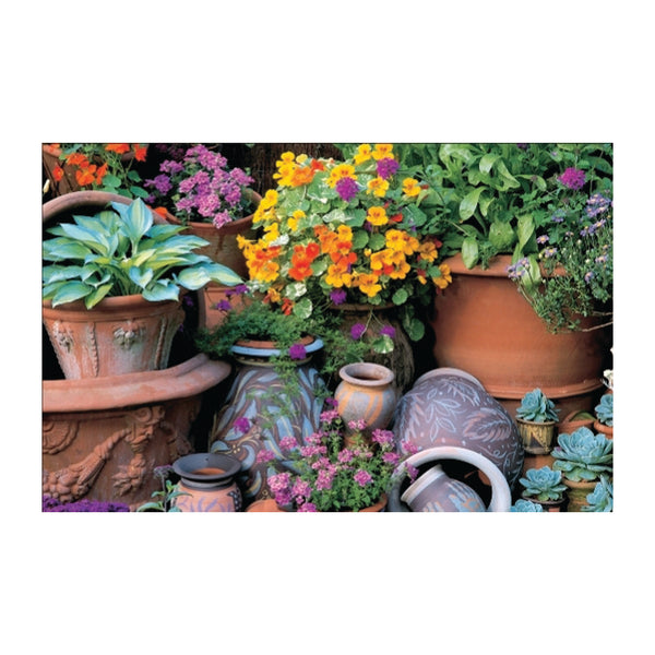 Whichford Terracotta Pots (500px)