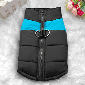 Waterproof/Windproof  Winter blue Jacket dog clothes collection