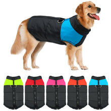 Load image into Gallery viewer, Golden Retriever Dog smilling wearing a waterproof winter jacket clothe