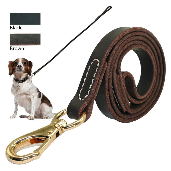 Leash Genuine Leather Gold Hook - FunnyPaws