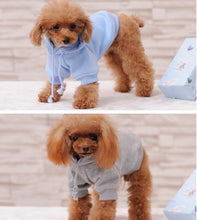 Load image into Gallery viewer, Fashionable Hoodie/Coat - FunnyPaws