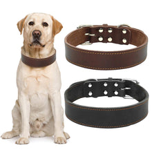Load image into Gallery viewer, Classy Leather Dog Collar - FunnyPaws