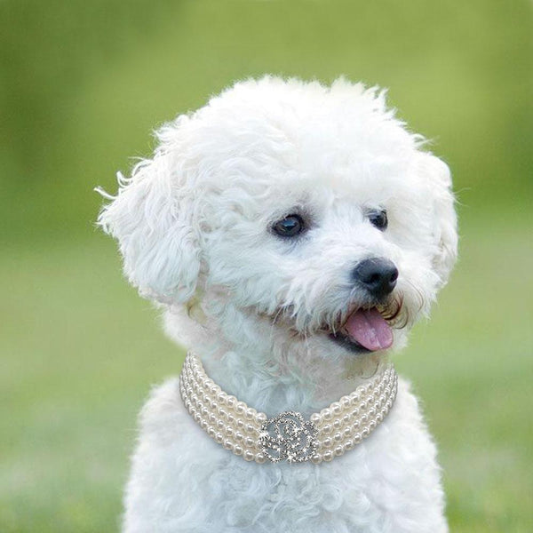 Rows Pearl Dog Necklace Choker Style - FunnyPaws