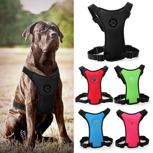 Car Seat Belt Harness with Leash - FunnyPaws