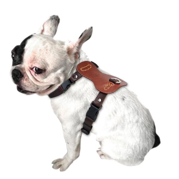 Adjustable Genuine Leather Harness - FunnyPaws