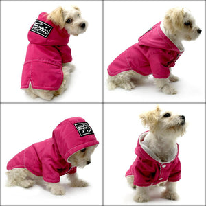 Cute dog wearing dog clothing warm jacket US