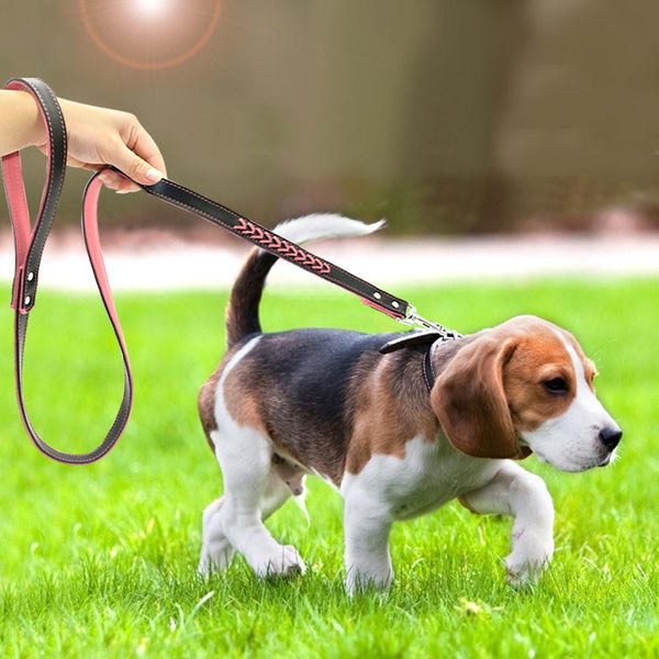 Durable Leather short Leash - FunnyPaws