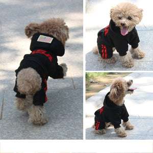 Happy funny dog wearing clothes jumpsuit