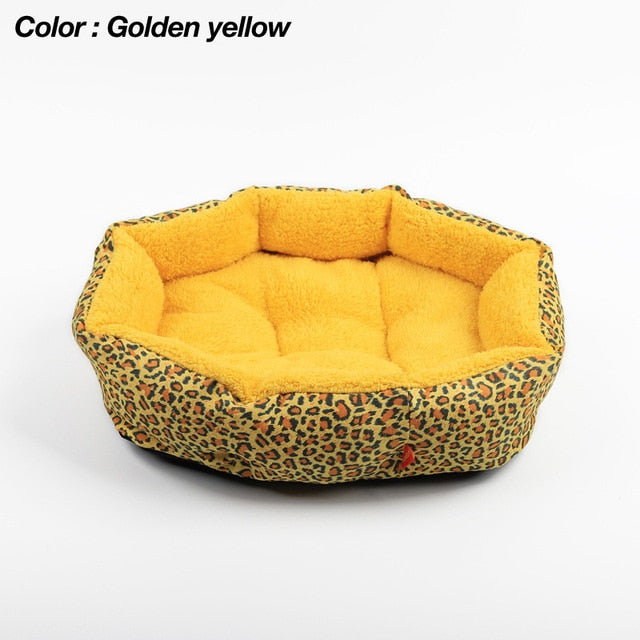 Colorful Leopard Bed suitable for Small Dogs, puppies - FunnyPaws