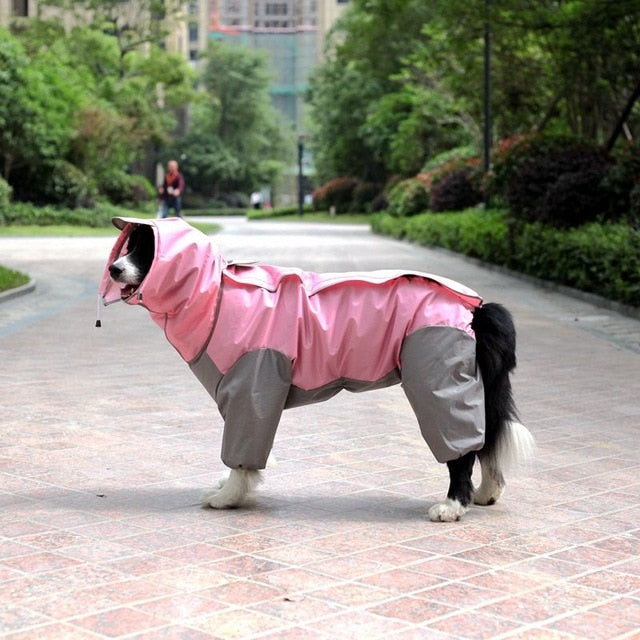 Cute dog wearing Waterproof Windproof warm jacket