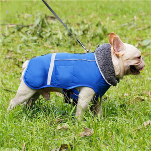 Outdoor Waterproof Stylish Coat - FunnyPaws