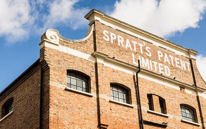 Step Inside London's Spratt's Factory