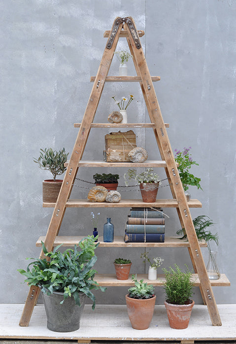 rustic standing ladder storage and display unit from homebarn