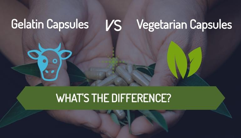 Gelatin vs. Vegetarian Capsules – What's the Difference?