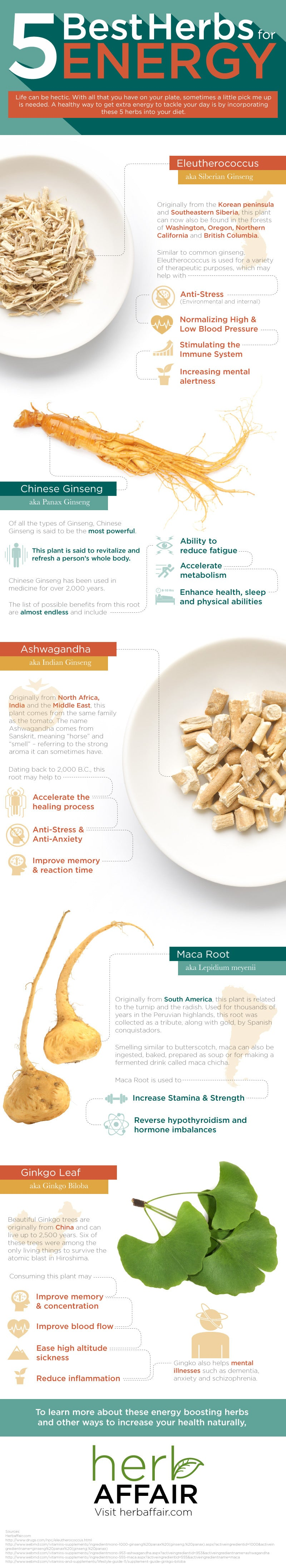 5 Best Herbs for Energy Infographic