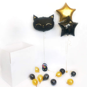 Halloween Black Cat Balloon in a Box
