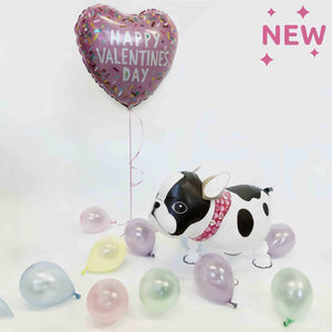 Valentines Inflated Walking Pet French Bulldog Balloon in a Box