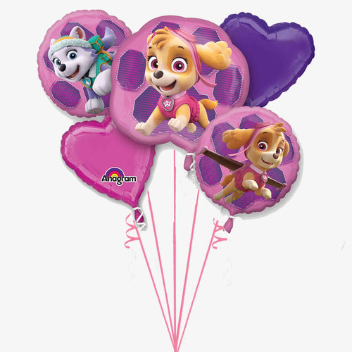 Paw Patrol Skye & Everest Balloon Bouquet