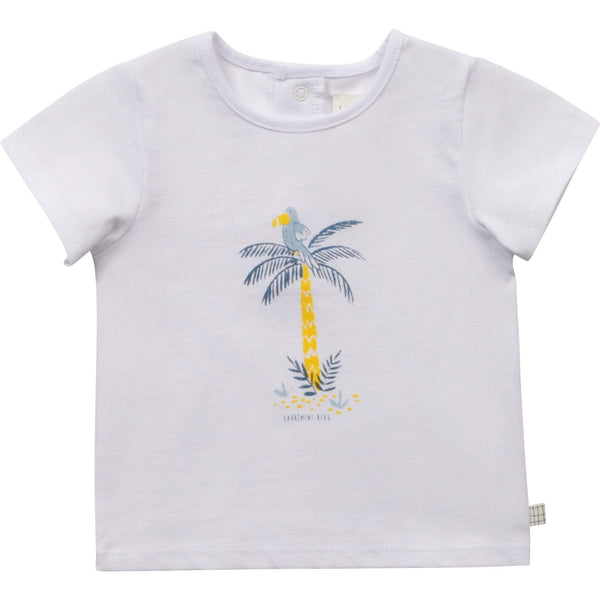 Carrément Beau Chandails Chandail palmier et toucan Toucan and palm tree t-shirt