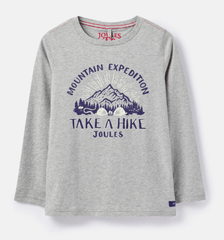 Chandail gris montagne Gray mountain t-shirt