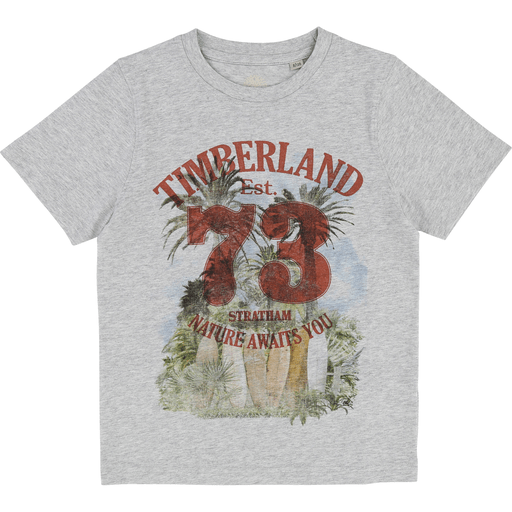 Timberland Chandails 16Y / Gris Chandail nature Nature printed T-shirt