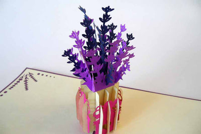Pop Up Card 193 Lavender