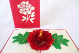 Pop Up Card 194 Peony Rose