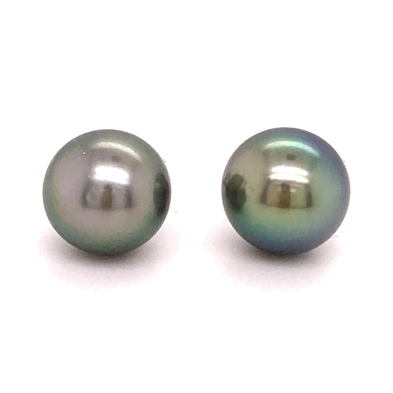 Genuine Tahitian Pearl Stud Earrings
